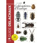 Coléoptères d'Europe