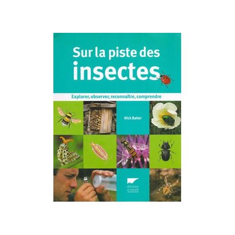 Sur la piste des insectes